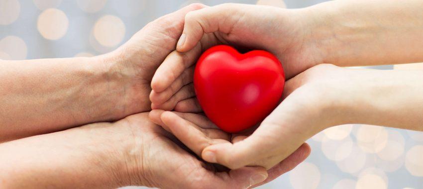 A importância sobre a humanização na saúde :